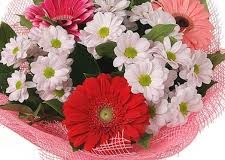 Живі квіти з доставкою по Кропивницькому – це чудовий елемент декору
