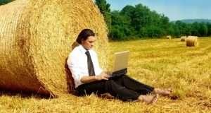 Агробизнес, почему сейчас стоит этим занятся?